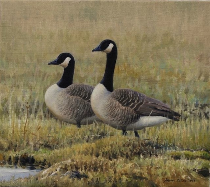 Nicolas Dillon |Candian Geese| oil | McAtamney Gallery and Design Store | Geraldine NZ