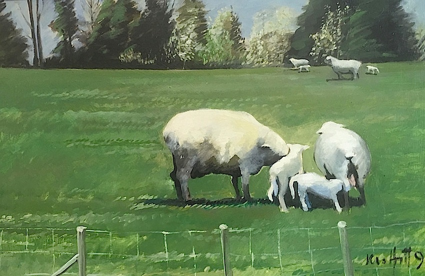 Trevor  Moffitt | Canterbury Paddocks |  Sheep Paddock  No 1 |1991 |oil on board| McAtamney Gallery and Design Store | Geraldine NZ