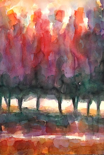 Nigel Wilson |watercolour | McAtamney Gallery and Design Store | Geraldine NZ