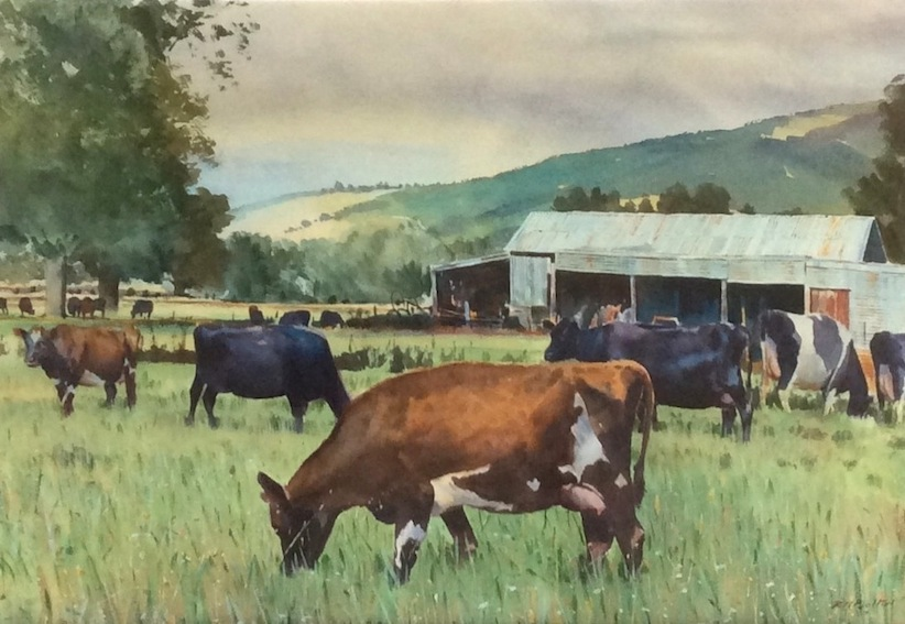 Richard Bolton | Cattle on Woodbury Road | McAtamney Gallery And Design Store | Geraldine NZ