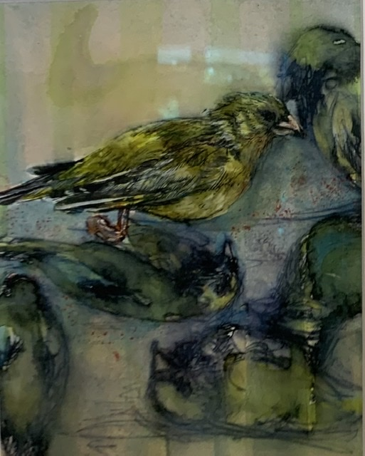 Julie Dunham | Bird Study | McAtamney Gallery and Design Store | Geraldine NZ