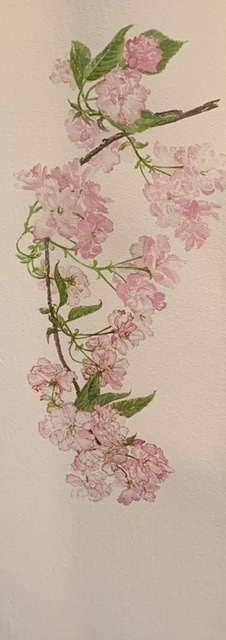 Julie Dunham | Pink Blossom | Mctamney Gallery and Design Store | Geraldine NZ